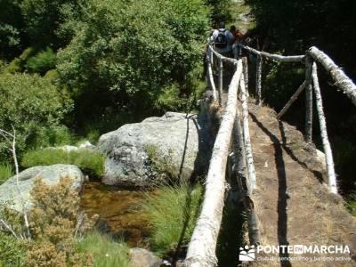 Ruta Lago de Sanabria - Senderismo Zamora; club de senderismo madrid